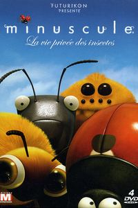Частная жизнь насекомых