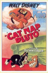 Кошачья шерсть Плуто