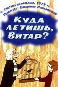 Куда летишь, Витар?