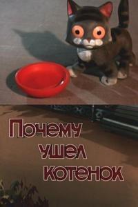 Почему ушёл котёнок