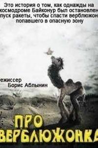 Про верблюжонка