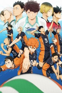 Волейбол!! 1 сезон